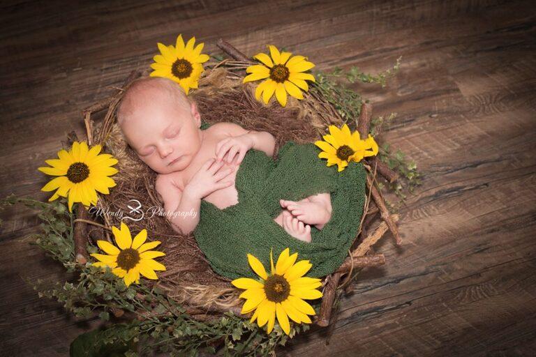 boulder_newborn_photographer_Colorado_wendybphotography_1001